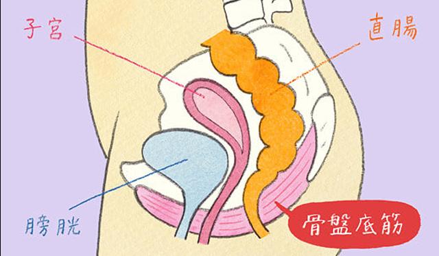 骨盤底筋群(ペリネ)のケア